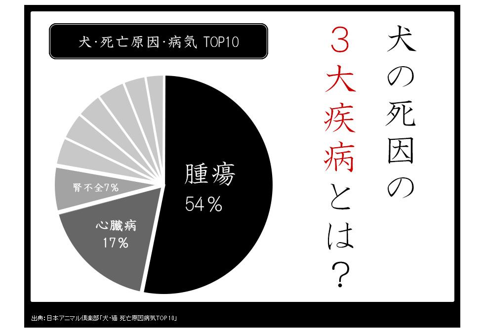 犬・死亡原因・病気 TOP10