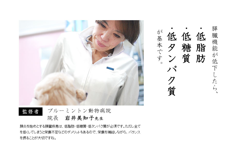 犬の膵臓(すい臓)・膵炎・高脂血症の愛犬には