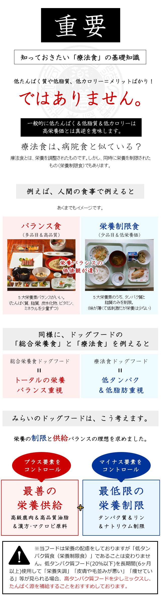 膵臓 に いい 食べ物