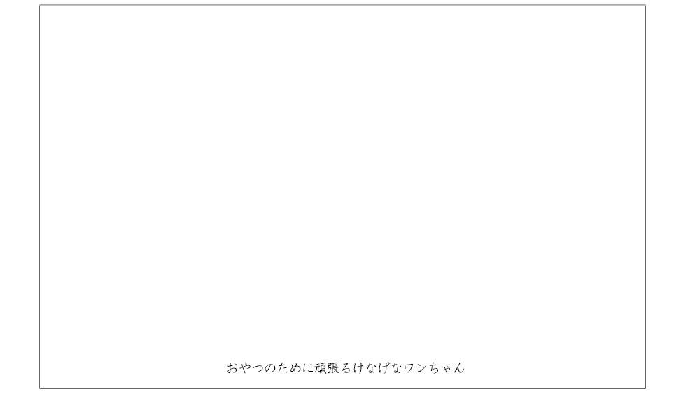 薬膳クッキー体験談動画2