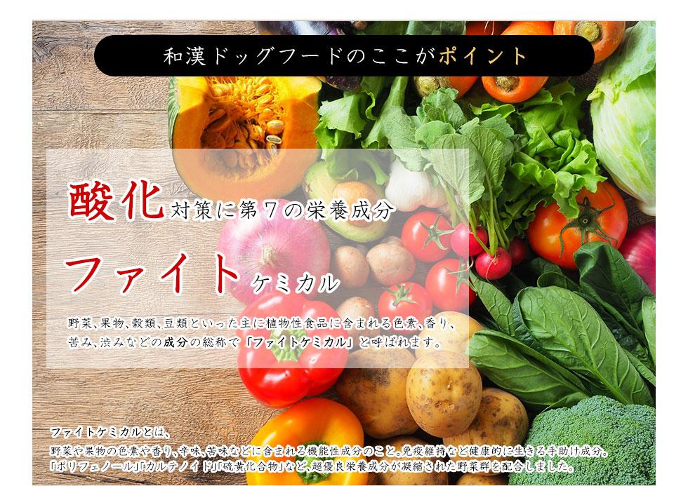 酸化対策に第7の栄養成分ファイトケミカル