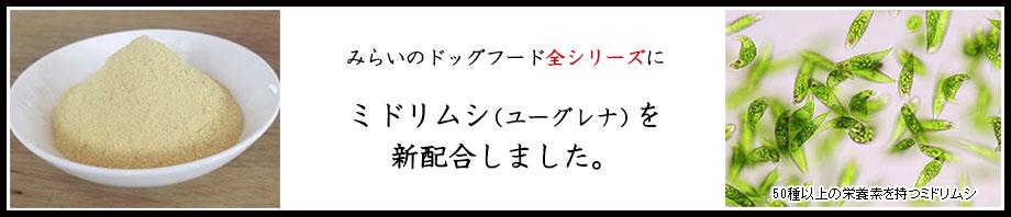 みらいのドッグフード【薬膳】ドッグフードシリーズにミドリムシ(ユーグレナ)追加